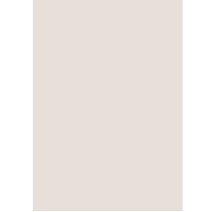Icon Arnika